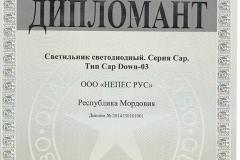 Диплом 100 лучших товаров России Новинка Cap Down 03